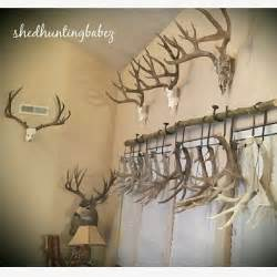 home decor antlers 25 best ideas about deer antler crafts on