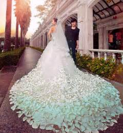 wedding gowns with extra long trains wedding short dresses