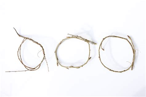 decorative twigs how to make a decorative bird s nest out of twigs