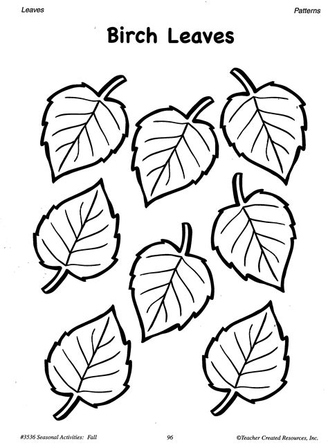 fall leaves printable activities free coloring pages of birch leaf