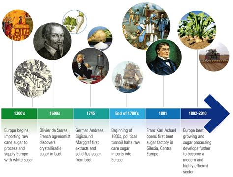history of in history of sugar in europe cefs