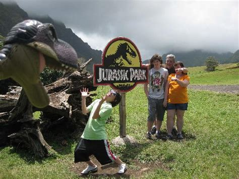 jurassic park tour you me dupree location for wedding ceremony picture of