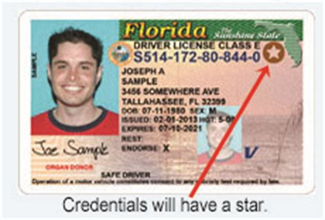 Florida Drivers License Lookup Document Requirements For Fl Driver License Or Id