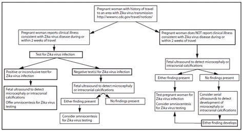 Interim Guidelines For Pregnant Women During A Zika Virus