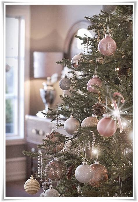 trees christmas trees and christmas on pinterest