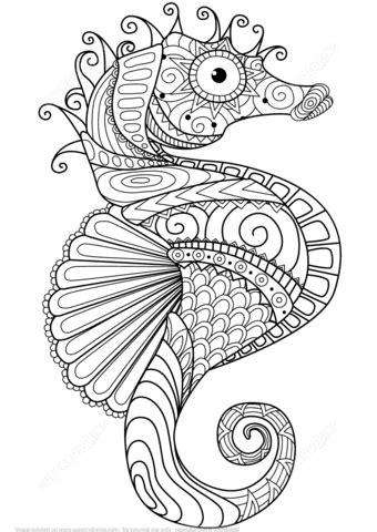 ausmalbild seepferdchen zentangle ausmalbilder kostenlos zum ausdrucken