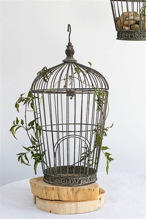 Bird On A Wire In A Cage Its All The Same by Distressed Wire Birdcage Pompeii 21in
