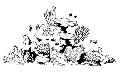 Clipart Of A Sketched Reef by Coral Reef Drawing Sketch Coloring Page