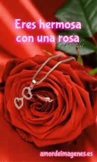 imagenes de rosas rojas en movimiento rosas en movimiento