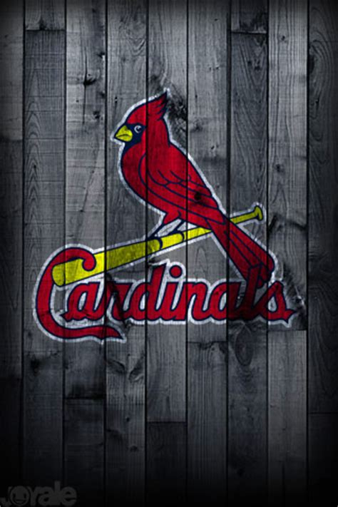 louis cardinals black wallpaperiphoneblackberry gabifeibel1
