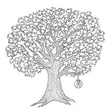coloring page maple tree multiple coloring pages maple leaves coloring pages