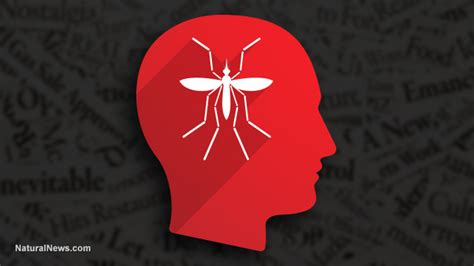 Virus Of The Mind The New Science Of The Meme - zika propaganda is a virus of the mind rooted in