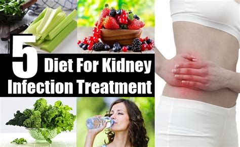 best diet for kidney infection treatment dietary