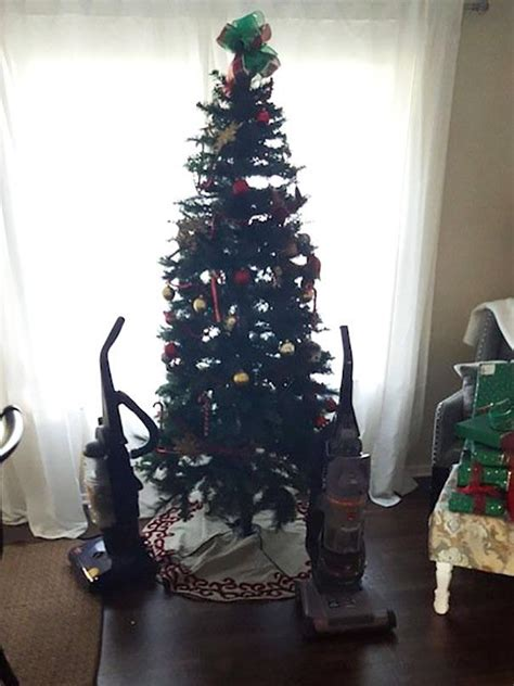 genius hacks  cat proof  christmas tree meowingtons