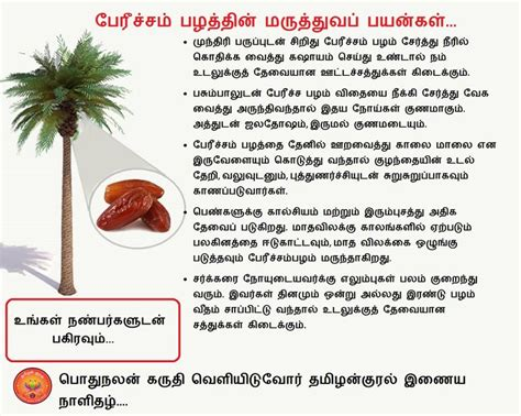 12 Tips On How To A Date 20 by Health Benefits Of Dates In Tamil Tamil Health Tips