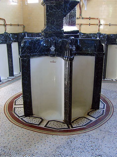 Cing Toilet Design by Urinals On Pinterest Toilets Victorian And Washroom Design