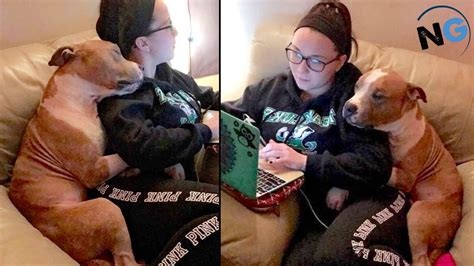 0008126186 the girl who saved the adopted dog won t stop hugging the woman who saved him