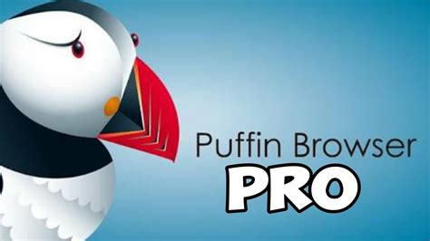 puffin web browser pro apk lenovo 10 si mostra in foto