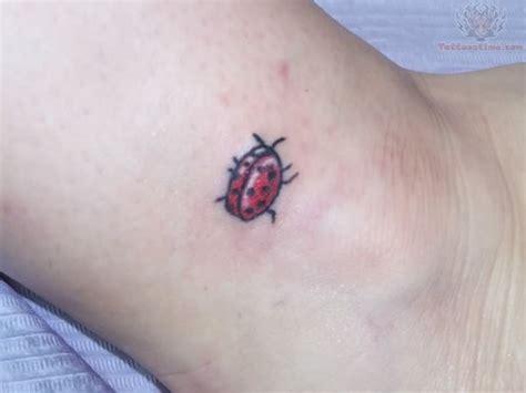 small ladybug tattoos small ladybug on ankle
