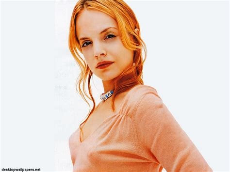 Mena Suvari Pictures by Mena Suvari Images Mena Suvari Hd Wallpaper And Background