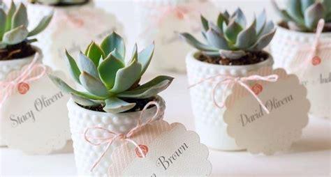 come curare le roselline in vaso matrimonio a napoli e ristorante piccole idee per i