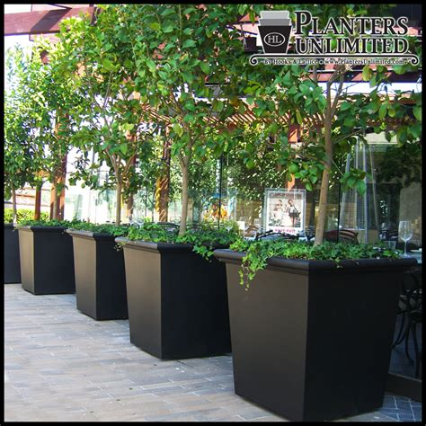 Artificial Tree For Home Decor by Square Fiberglass Planters Commercial Sized Planters