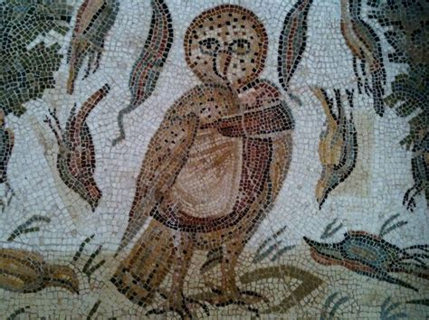 mosaic pattern owl 42 best mosaic owls images on pinterest owls barn owls