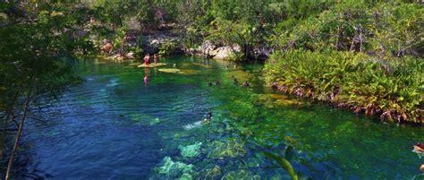 jardin del eden everyone s favorite cenote to visit el jardin del eden