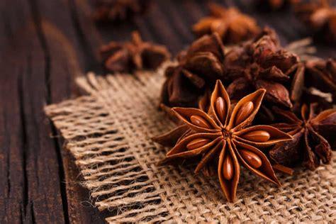 manfaat bunga lawang bagi tubuh kataposcom