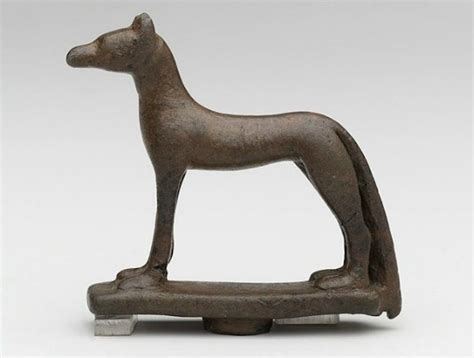 ancient dogs ancient dogs
