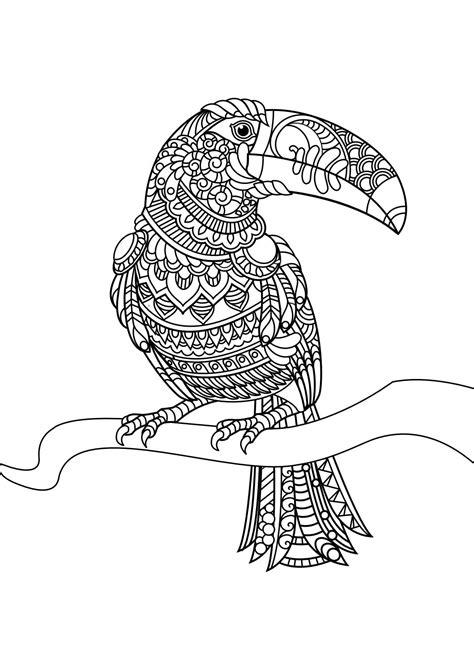 animal coloring pages pdf animal coloring pages pdf pajaros 06