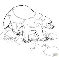 wolverine animal coloring page free printable coloring pages