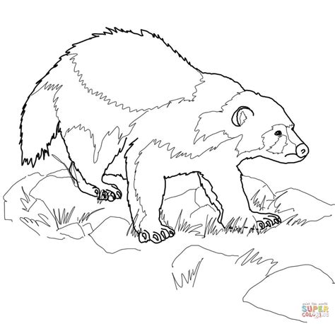 wolverine coloring pages for free wolverine animal coloring page free printable coloring pages