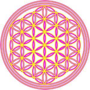 le blume des lebens symbol blume des lebens