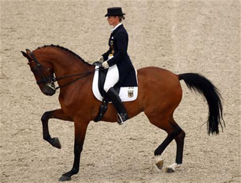 domäne bett le cheval sur les 233 paules magazine cheval monchval mag