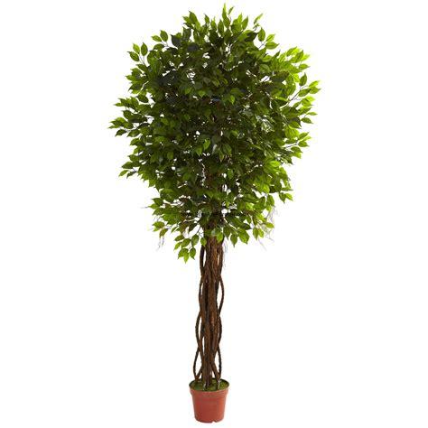 7 6 quot uv resistant outdoor artificial ficus tree w pot