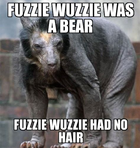 Hairless Bear Meme - class of 2018 page 495 student