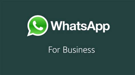 bug whatsapp axis 2018 whatsapp business for android will have chat filters soon