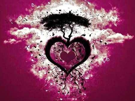 imágenes bonitas de amor animadas sin frases imagenes de amor sin texto bajar gratis fotos de amor