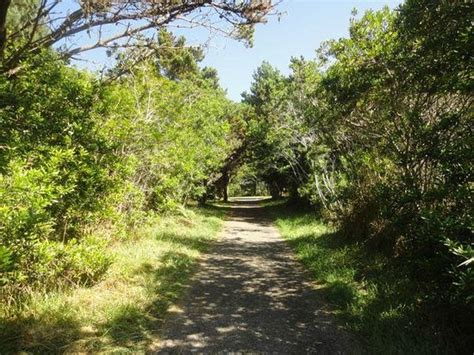 hotels near fort worth botanical gardens near the coastal trail picture of mendocino coast