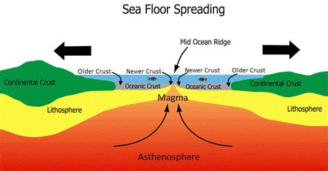 What Does Sea Floor Spreading by Upsc Ias Ignited Minds Academy Geography Lecture 3 Upsc Ias Continental Drift Theory