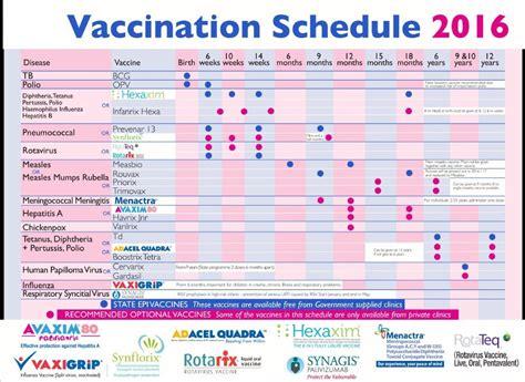 vaccine schedule 38 useful immunization vaccination schedules pdf template lab