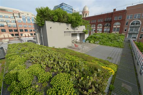 top 10 landscape architects d c is turning green on top landscape architecture magazine