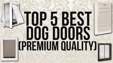Best Pet Doors by Top 5 Best Doors Premium Quality