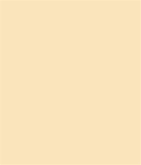 asian paints code 0315 buy asian paints acrylic distemper ivory 0315