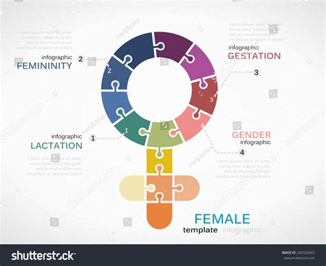 Female Symbol Infographic Template Puzzled Jigsaw Stock Vector 242320402 Shutterstock Gender Infographic Template