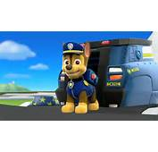 Paw Patrol Skye And Chase In Love  270p