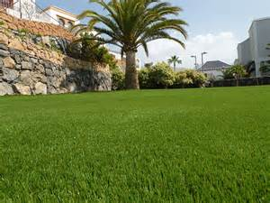 Artificial lawn at home the luxury of grass in your garden
