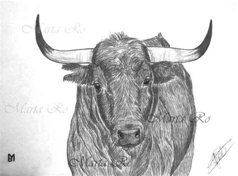 imagenes de toros para dibujar a lapiz 23 best mis dibujos quot toros y caballos quot images on pinterest