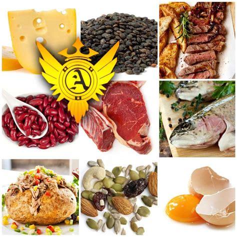 5 proteins in our pin alliance jiu jitsu catlica julio 2010 on